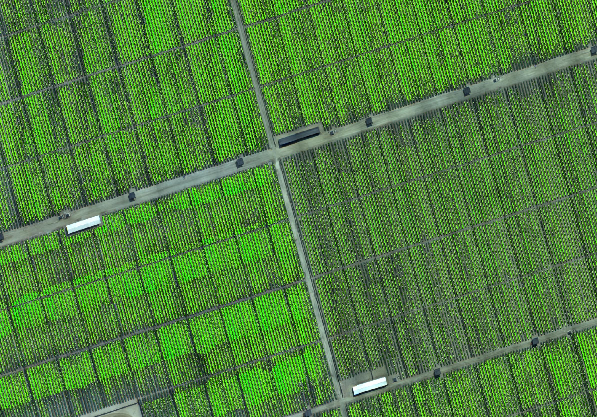 Drones Peru Fotogrametria y Agricultura de precisión